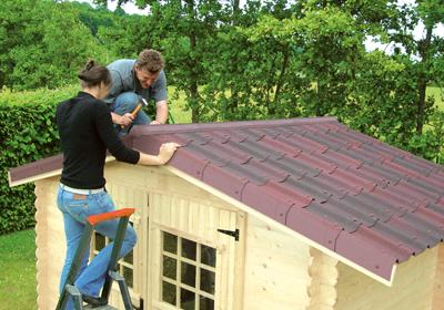 toit cabane de jardin